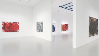 Kazuo Shiraga: Tales of the Water Margin, installation view