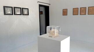 Terra Tenebris, installation view