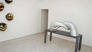 Lun Tuchnowski - Shifting Identities, installation view