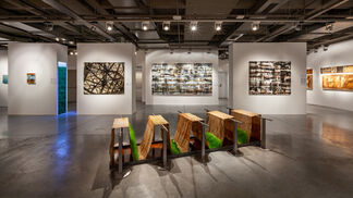 Canan Tolon: You Tell Me, installation view