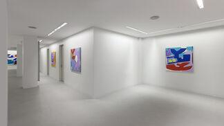 Hayal Pozantı: .tr, installation view