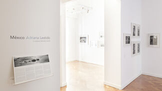 Mexico - Adriana Lestido, installation view