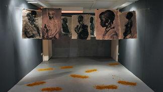 >Amazing Amazons, installation view