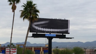 Manifest Destiny Billboard Project Chapter 8: Bobbi Woods, installation view