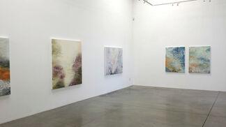 Laura Fayer: Dreamscape, installation view