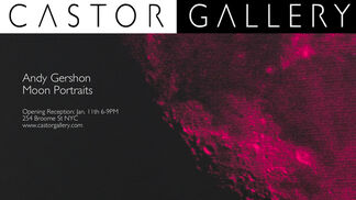 Moon Portraits, installation view