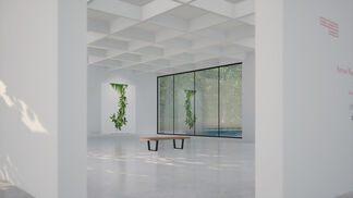AFTER NATURE | Andrea Wolf, installation view