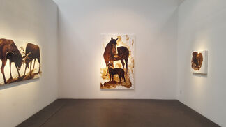 James Griffith: Biophilia, installation view