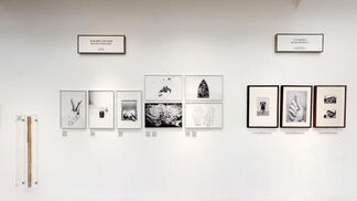 Laia Abril / On rape, A history of Misogyny, ChapterTwo, installation view