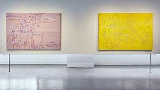 Ranu Mukherjee: Shadowtime, installation view