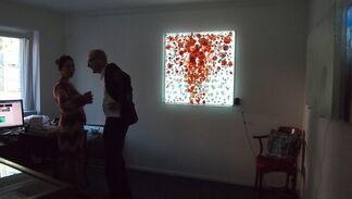Peter Bynum: Illuminated Paintings, installation view