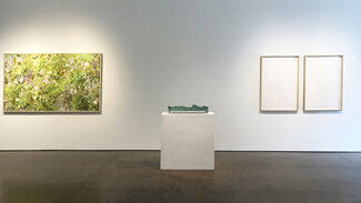 CARROLL TODD | Earth and Water, installation view