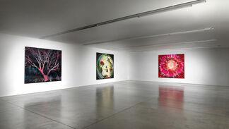Jules de Balincourt   Parallel Universe, installation view