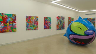 Beneath the Surface, installation view
