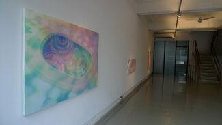 Synesthesia, installation view