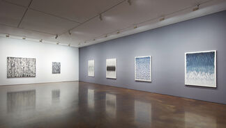 Kwon Young-Woo, installation view