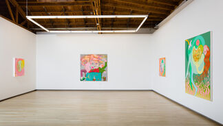 Wendell Gladstone: Fever Pitch, installation view