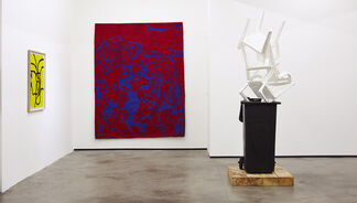 I Saw This, installation view