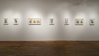Dominique Paul: Unnatural Selections, installation view
