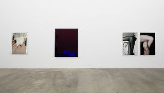 """""""Quote Unquote"""" - Amie Dicke, installation view"""