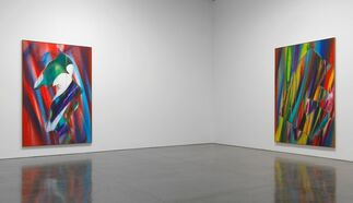 Katharina Grosse, installation view