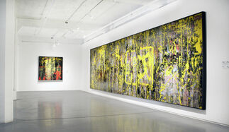 The Water Lily Pond of Life, installation view