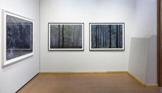 Michael Lange: WALD | fluss, installation view