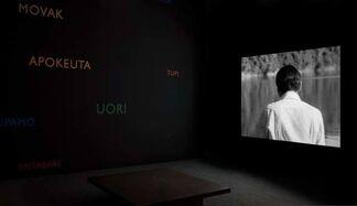 Lothar Baumgarten, installation view