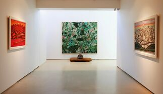 Kim Chong Hak, installation view