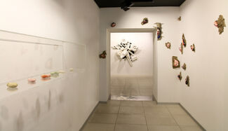 We must cultivate our garden, installation view