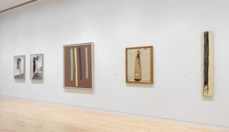 Painting Paintings (David Reed) 1975, installation view