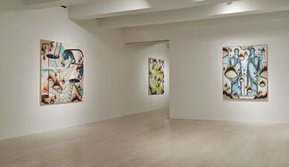 Josh Reames: the ants are my friends, and they're blowin' in the wind, installation view
