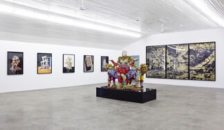 Uncertain Terms, installation view