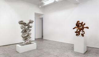 Tony Cragg: Recent Sculptures, installation view