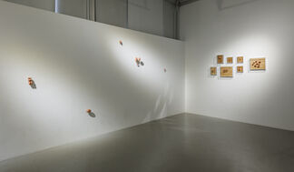 Holes, installation view