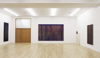 Luisa Rabbia: Drawing, installation view