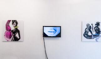 K-Surrogates, installation view