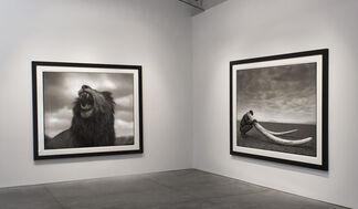 Nick Brandt : Across the Ravaged Land, installation view