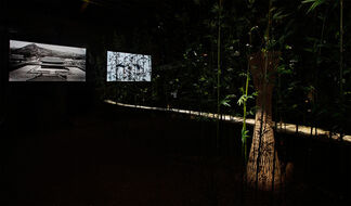 Demilitarized Zone (DMZ) Project –夢의 庭園 / Dreaming of Earth, installation view