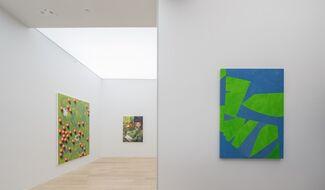 MAUVAISES HERBES: SARAH CROWNER, CAITLIN KEOGH, PAULINA OLOWSKA, installation view