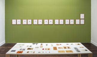 TIMELINE | El Paisaje, las plantas y las flores, installation view