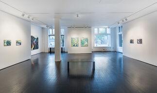 Adam Sorensen, Places, installation view