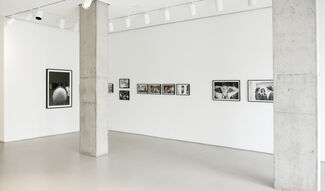 Lombard Freid Gallery: Lucien Samaha: The Flight Attendant Years: 1978-1986, installation view