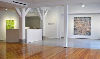 Regina Scully: Terra Incognita, installation view
