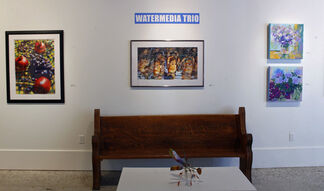 Watermedia Trio, installation view