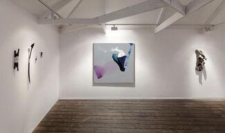Anima Mundi : A Mixed Winter Exhibition, installation view