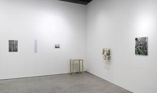 Galeria Luisa Strina at Art Basel 2014, installation view
