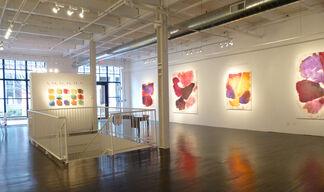 Dirk De Bruycker & Carrie McGee, installation view
