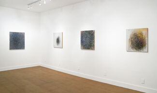Patrick Keesey - Partial Recovery, installation view