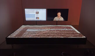 Hito Steyerl: Duty-Free Art, installation view